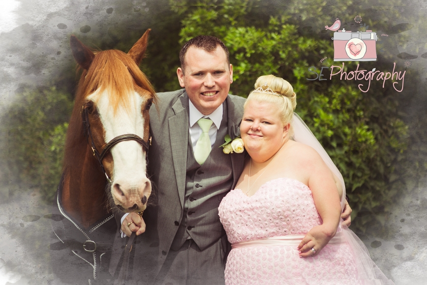 Horse at Wedding