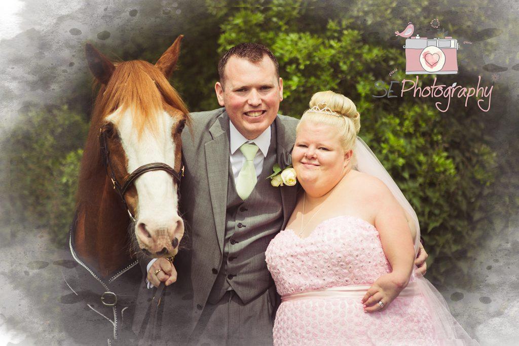 Horse at Wedding